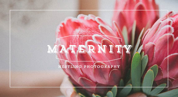 Todler Friends_Nestling Photography - Jacqui's Pregnancy_Cover