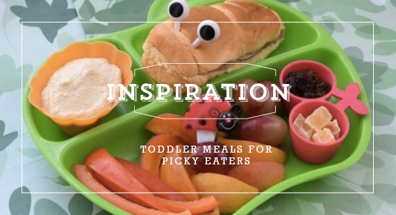 Toddler Meals For Picky Eaters Toddler Friends